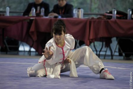 20120211_competition_wushu_Limoges_03.jpg