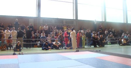 20120519_competition_kungfu_cleon_05.jpg